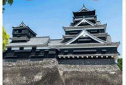 kurowizquiz-kumamotozyou